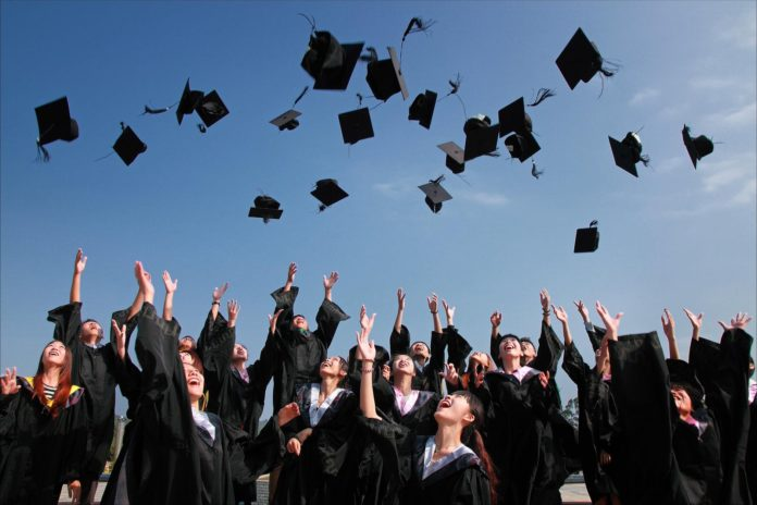 job search tips, recent graduates, strategies, lyari